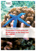 Ecosystem Functioning and Biodiversity in the Deep Sea (EuroDEEP) – Final Report