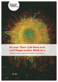 Human Stem Cell Research and Regenerative Medicine