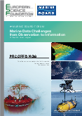 Marine Data Challenges: from Observation to Information