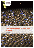 Self-Organised NanoStructures (SONS) II – Final Report