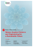 Nature-Inspired Science and Engineering for a Sustainable Future